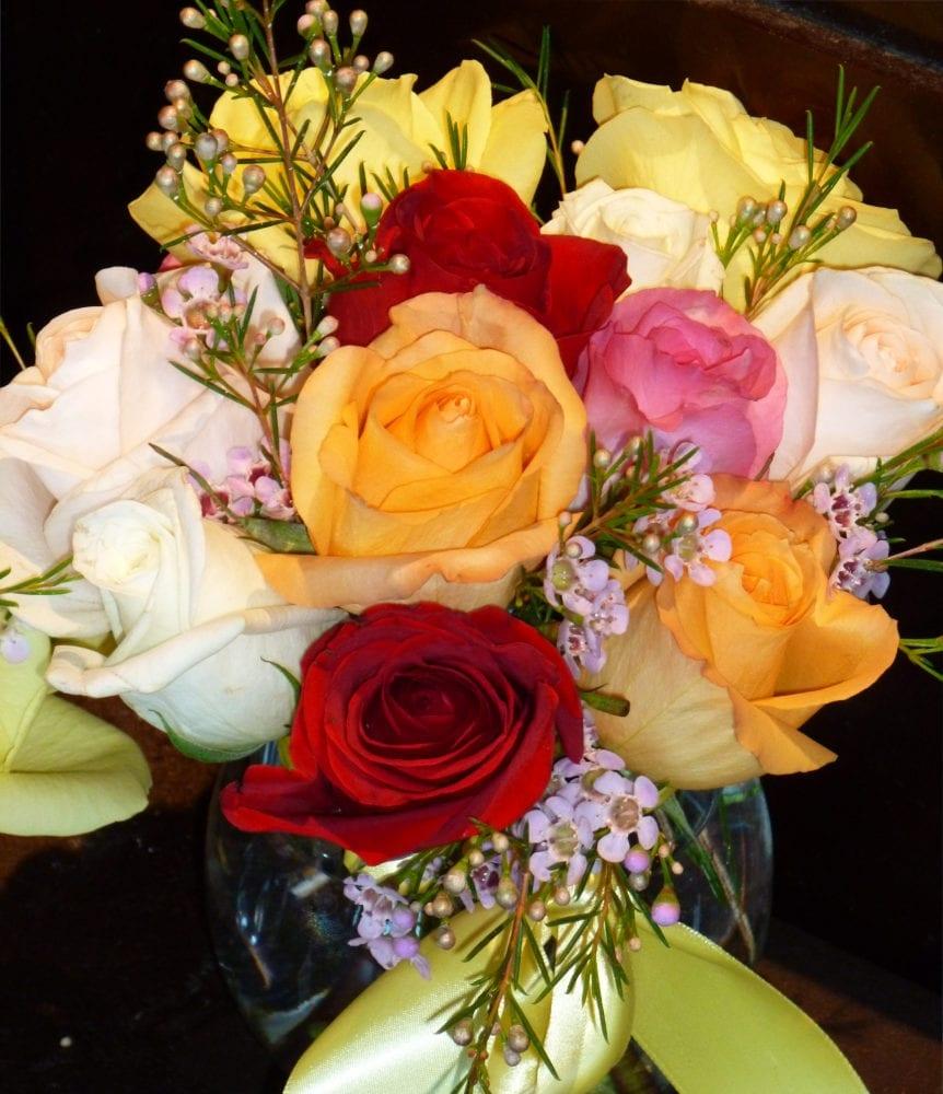 Roses-crop